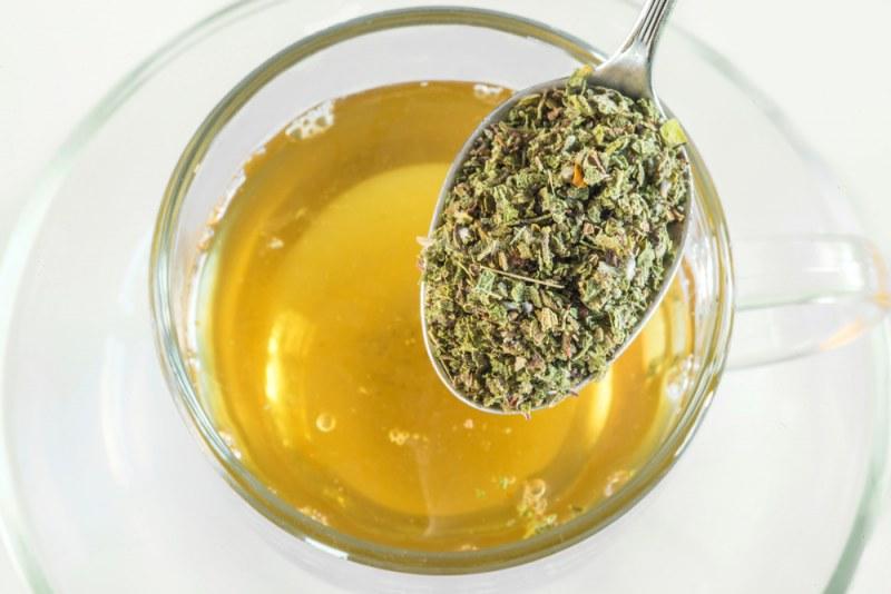 Трава спорыш — лечебные свойства и противопоказания