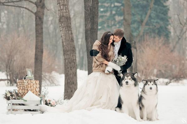 Зимняя свадьба — оформление