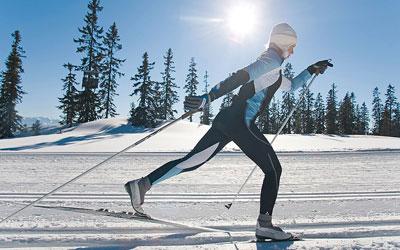 бег на лыжах какие мышцы работают