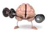 Упражнения для мозга — помогает ли методика стать смышленее?